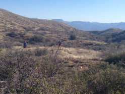 AZT team trail work
